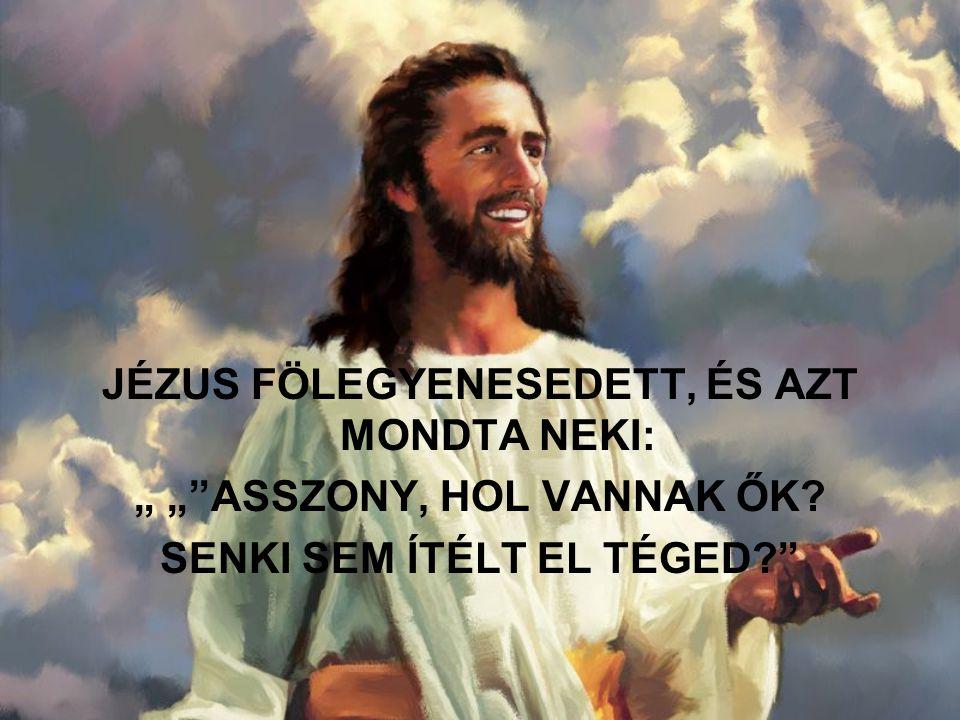 """JÉZUS FÖLEGYENESEDETT, ÉS AZT MONDTA NEKI: """" """" ASSZONY, HOL VANNAK ŐK"""