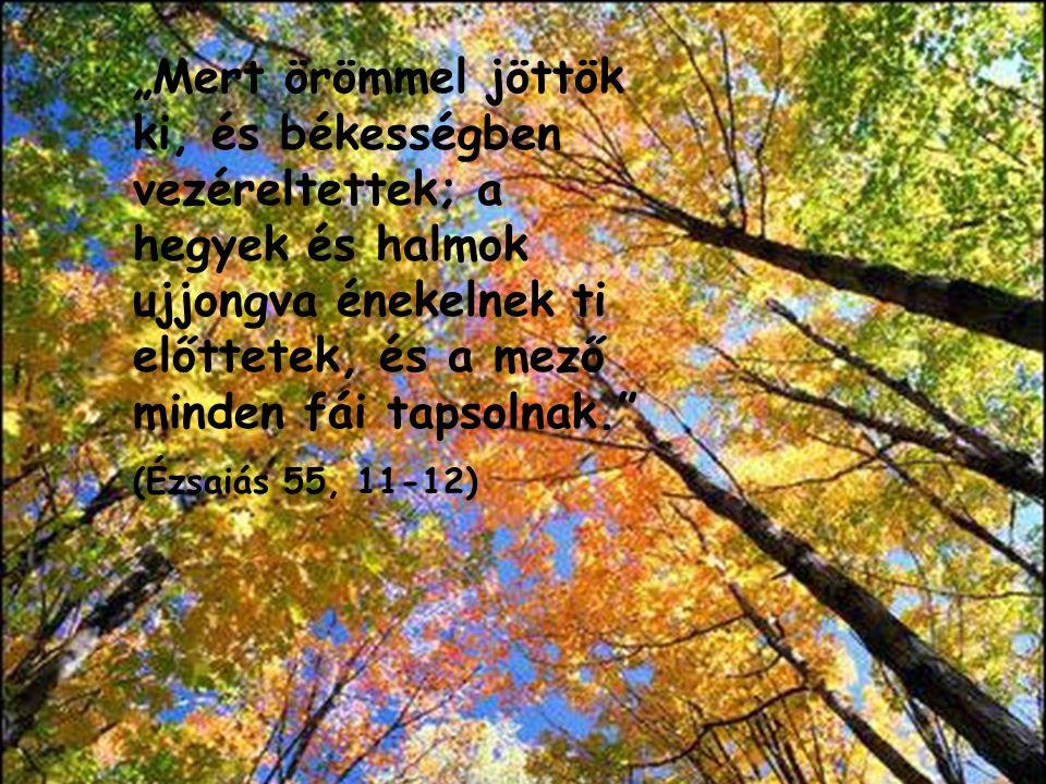 """""""Mert örömmel jöttök ki, és békességben vezéreltettek; a hegyek és halmok ujjongva énekelnek ti előttetek, és a mező minden fái tapsolnak."""