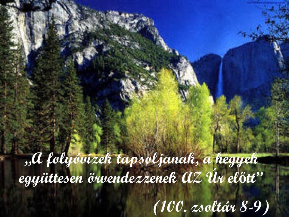 """""""A folyóvizek tapsoljanak, a hegyek együttesen örvendezzenek AZ Úr előtt"""