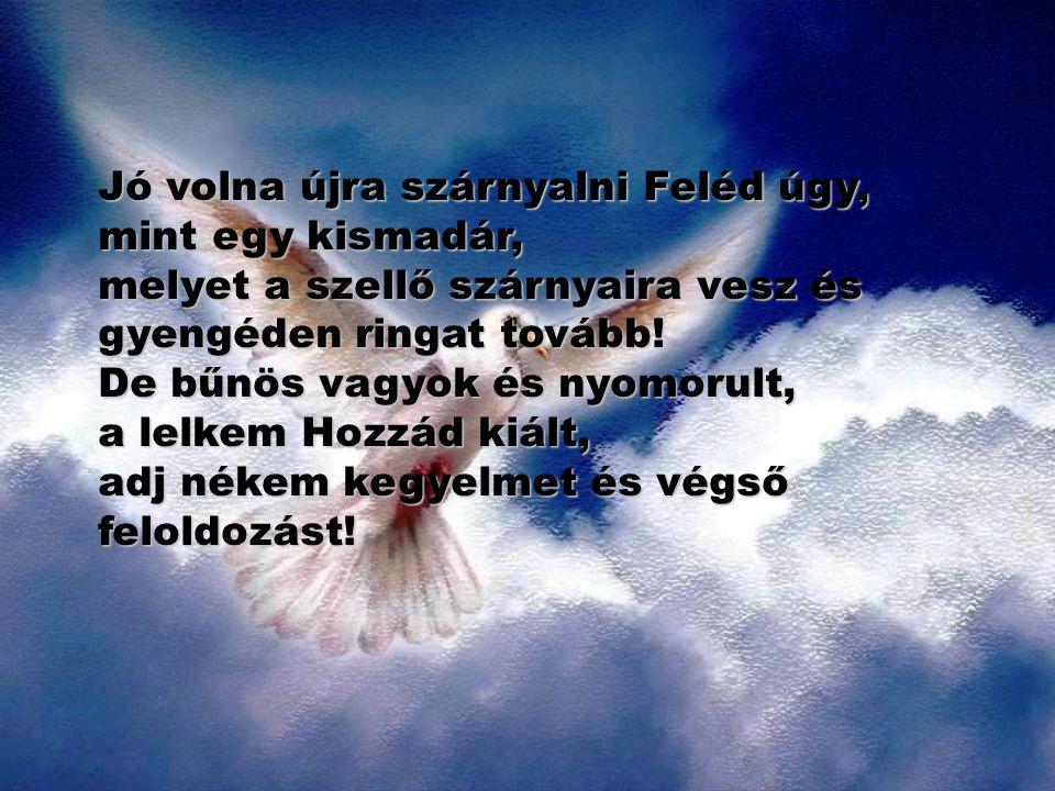 Jó volna újra szárnyalni Feléd úgy, mint egy kismadár, melyet a szellő szárnyaira vesz és gyengéden ringat tovább!