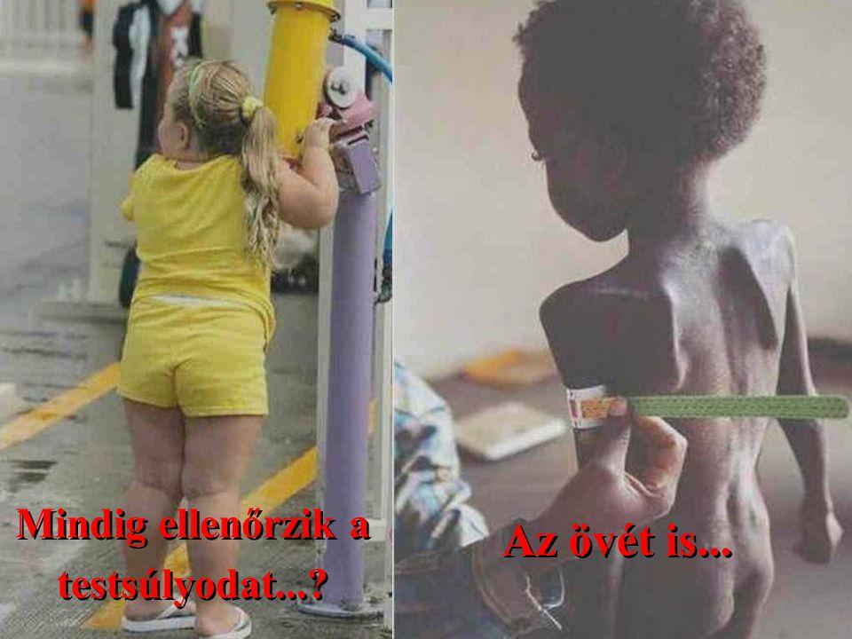 Mindig ellenőrzik a testsúlyodat...