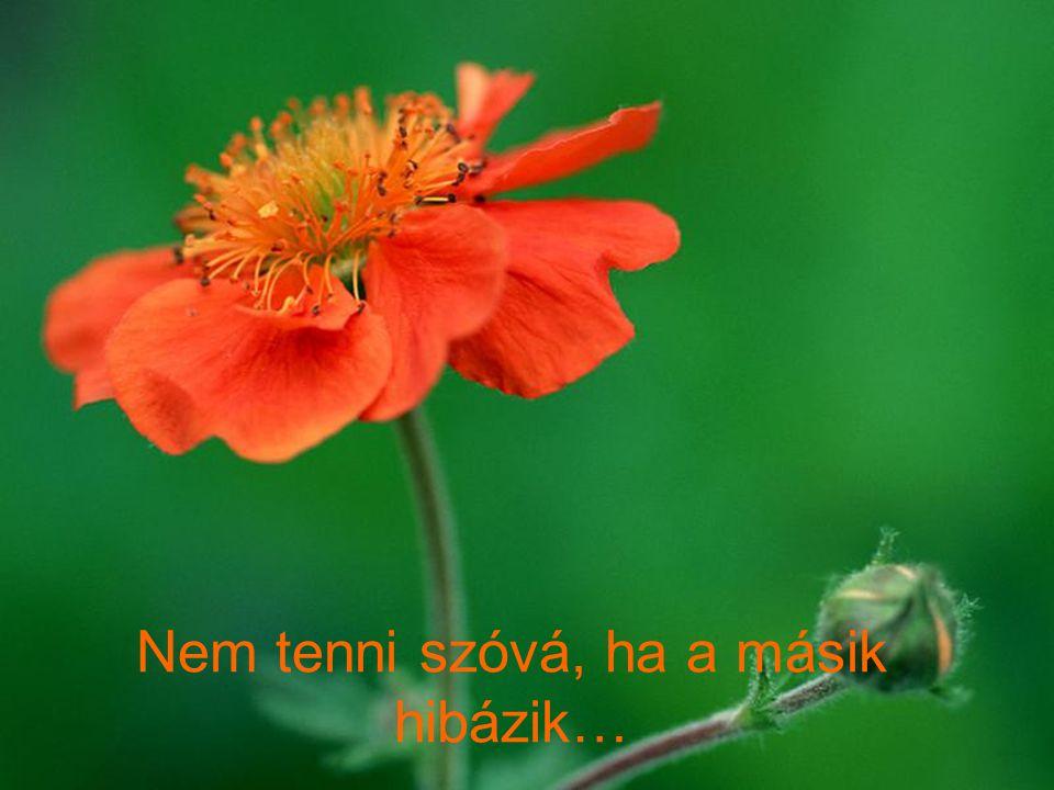 Nem tenni szóvá, ha a másik hibázik…