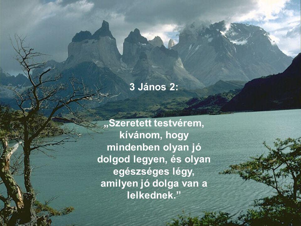 """3 János 2: """"Szeretett testvérem, kívánom, hogy mindenben olyan jó dolgod legyen, és olyan egészséges légy, amilyen jó dolga van a lelkednek."""