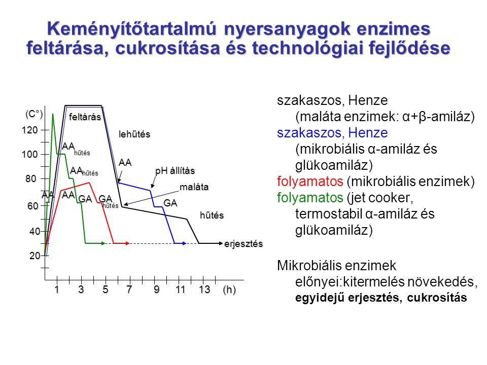 Keményítőtartalmú nyersanyagok enzimes feltárása, cukrosítása és technológiai fejlődése