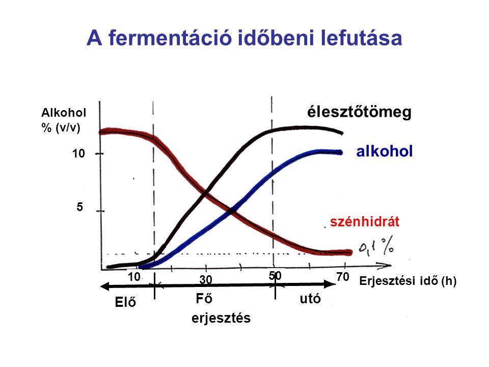 A fermentáció időbeni lefutása