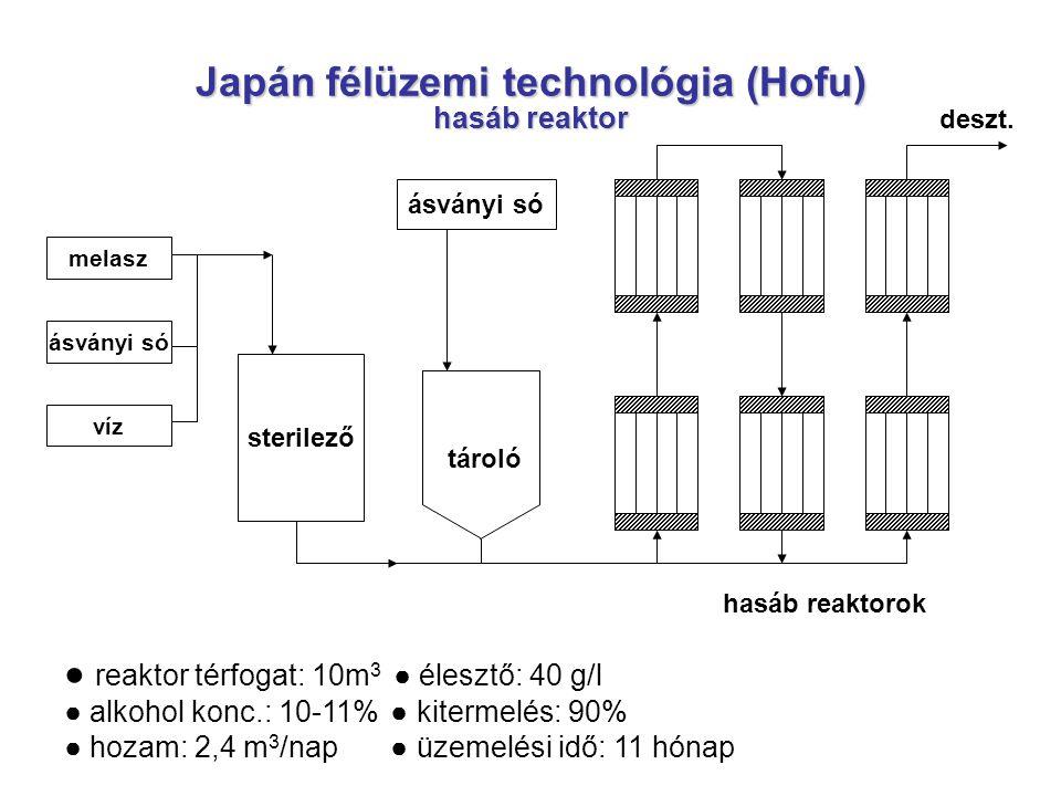 Japán félüzemi technológia (Hofu) hasáb reaktor