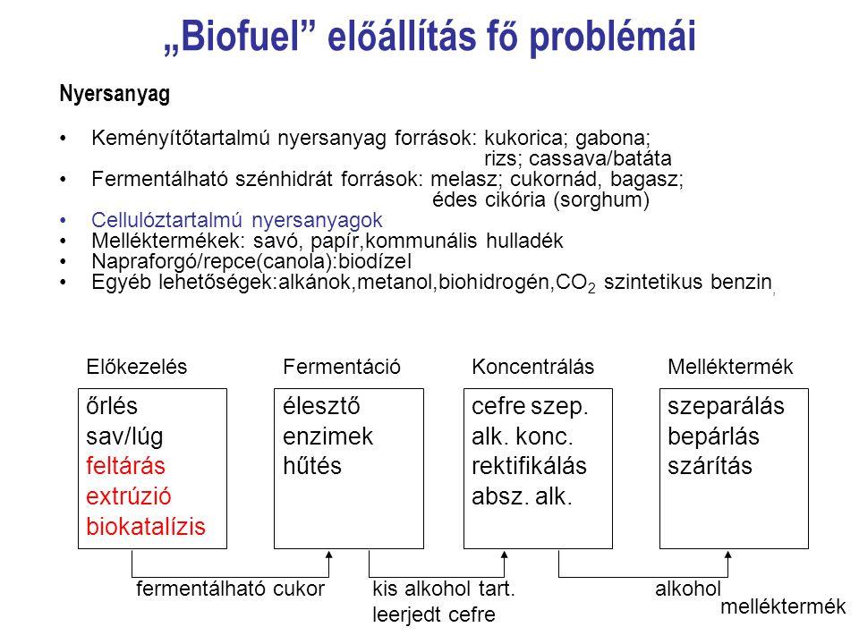 """""""Biofuel előállítás fő problémái"""