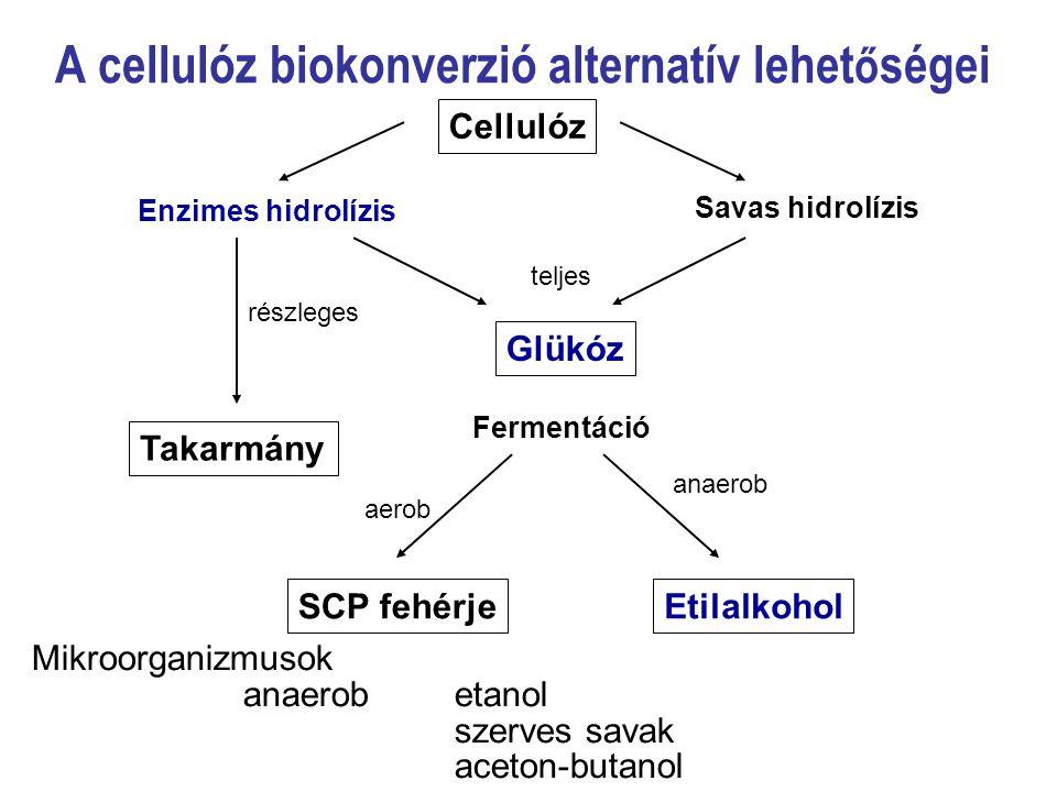 A cellulóz biokonverzió alternatív lehetőségei