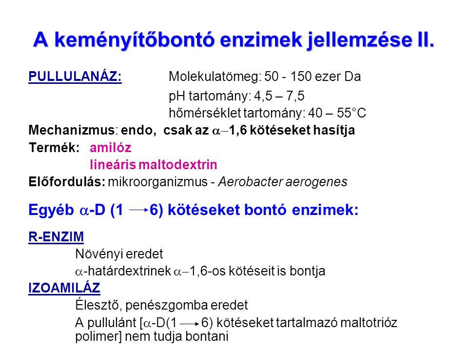 A keményítőbontó enzimek jellemzése II.