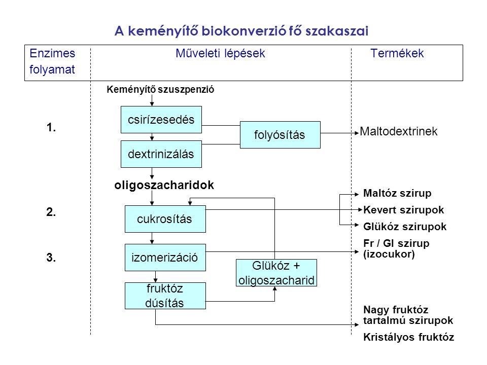 A keményítő biokonverzió fő szakaszai