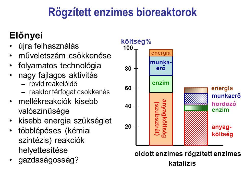 Rögzített enzimes bioreaktorok