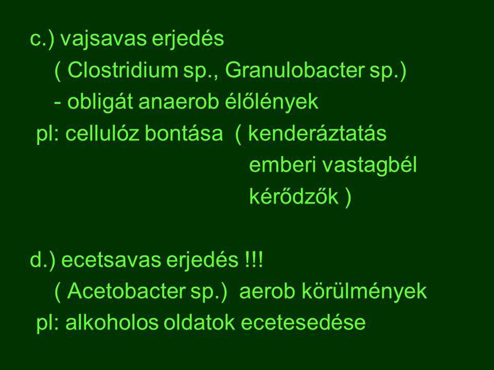 c.) vajsavas erjedés ( Clostridium sp., Granulobacter sp.) - obligát anaerob élőlények. pl: cellulóz bontása ( kenderáztatás.
