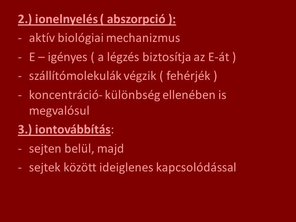 2.) ionelnyelés ( abszorpció ):