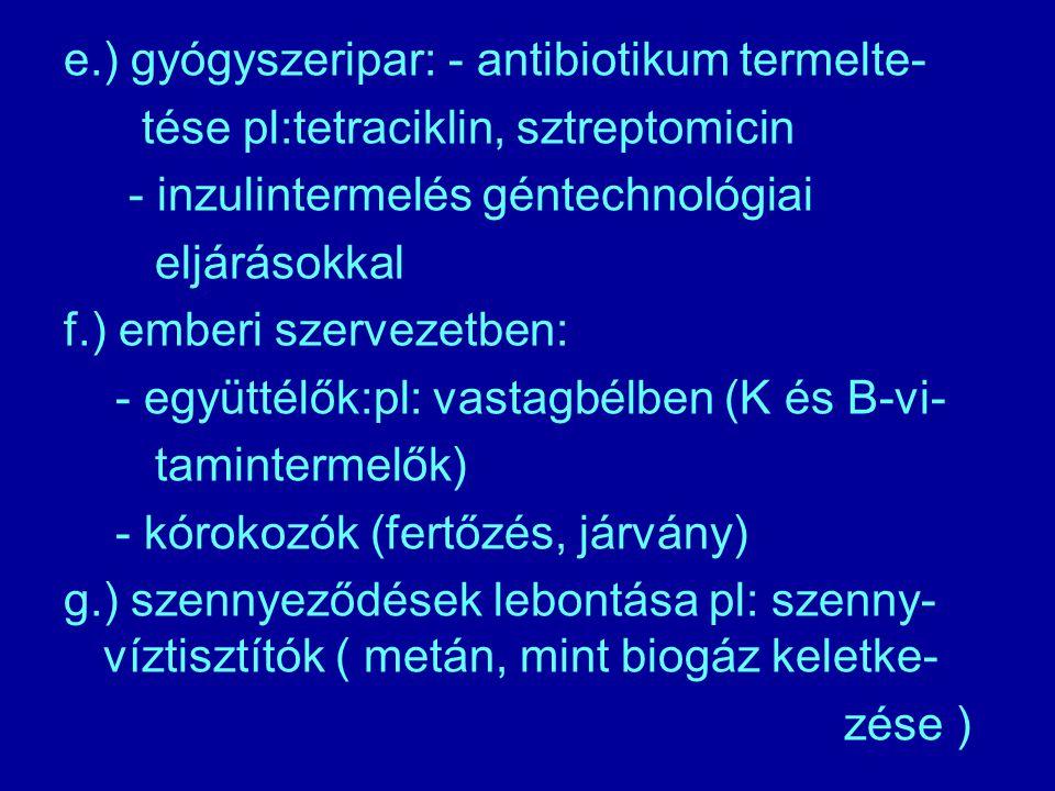 e.) gyógyszeripar: - antibiotikum termelte-