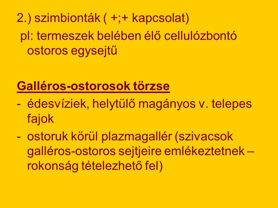 2.) szimbionták ( +;+ kapcsolat)