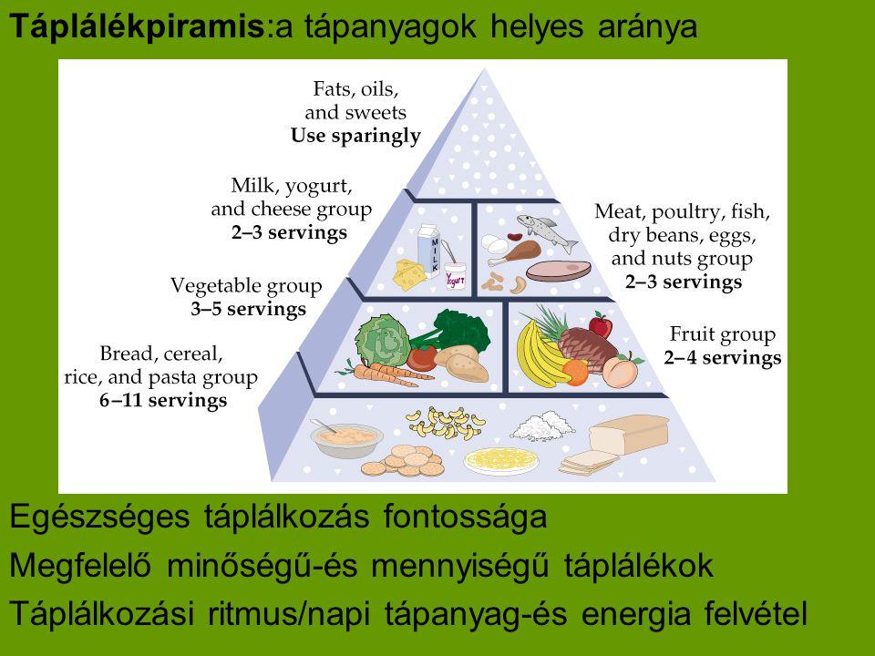 Táplálékpiramis:a tápanyagok helyes aránya