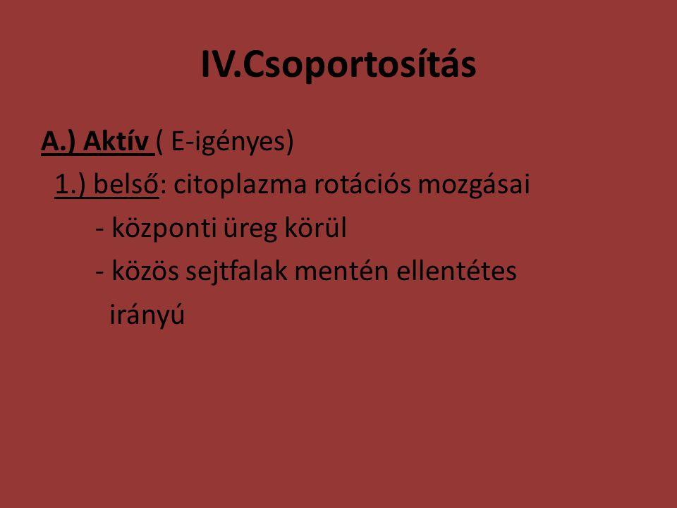 IV.Csoportosítás A.) Aktív ( E-igényes)