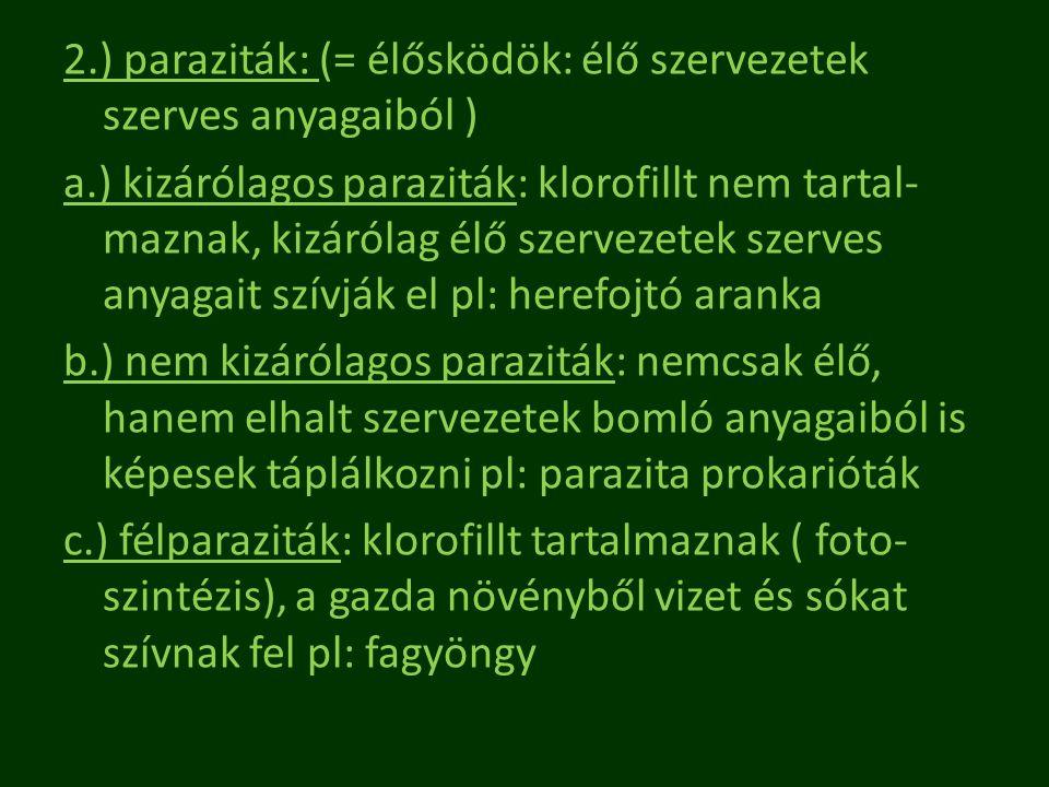 2. ) paraziták: (= élősködök: élő szervezetek szerves anyagaiból ) a