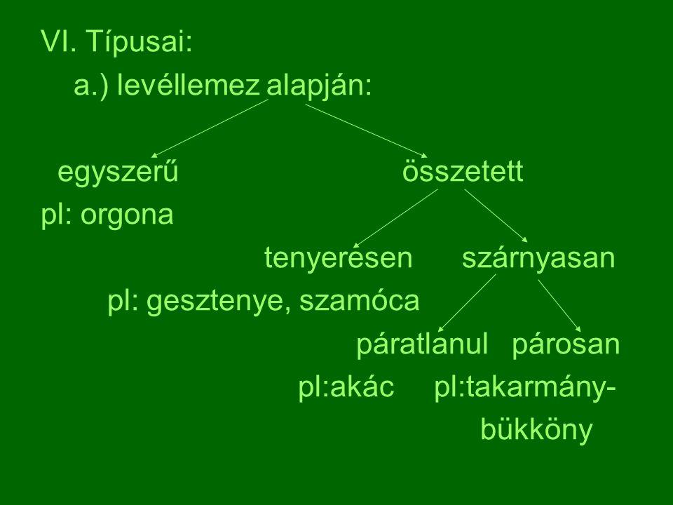 VI. Típusai: a.) levéllemez alapján: egyszerű összetett. pl: orgona. tenyeresen szárnyasan.