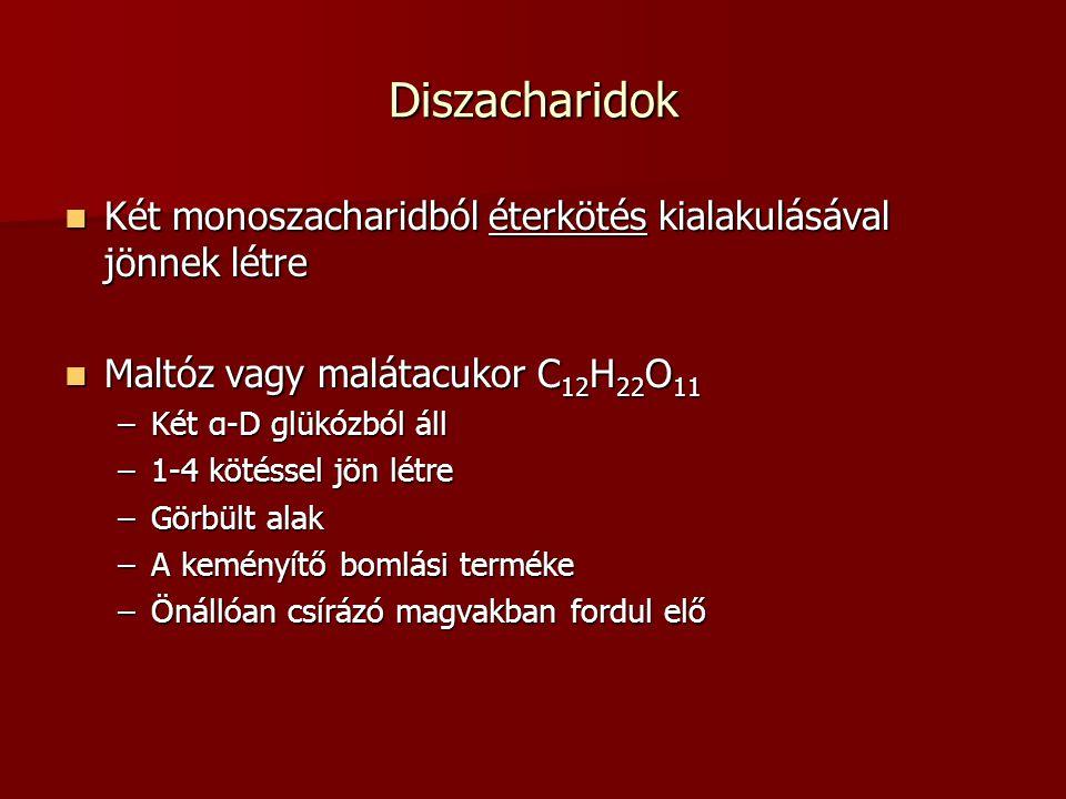 Diszacharidok Két monoszacharidból éterkötés kialakulásával jönnek létre. Maltóz vagy malátacukor C12H22O11.