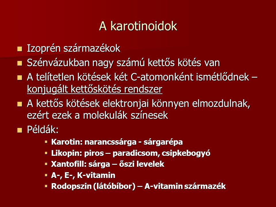 A karotinoidok Izoprén származékok