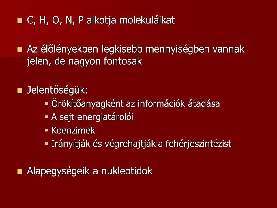 C, H, O, N, P alkotja molekuláikat