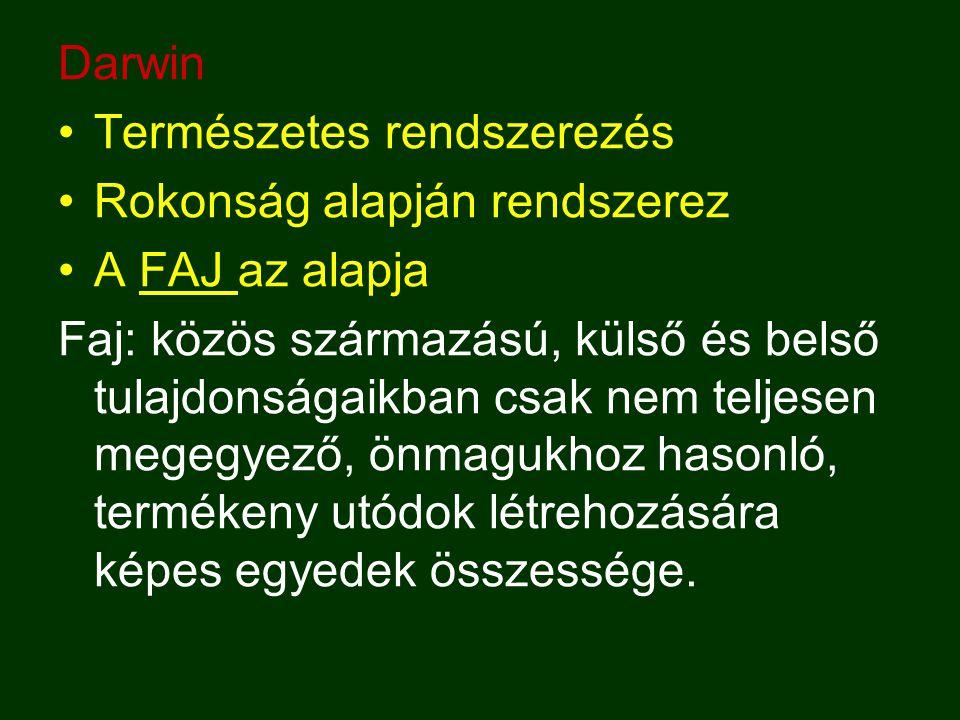 Darwin Természetes rendszerezés. Rokonság alapján rendszerez. A FAJ az alapja.