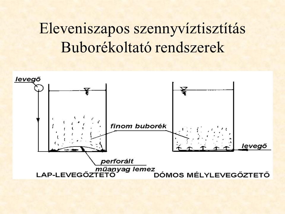 Eleveniszapos szennyvíztisztítás Buborékoltató rendszerek