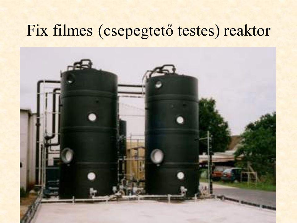 Fix filmes (csepegtető testes) reaktor
