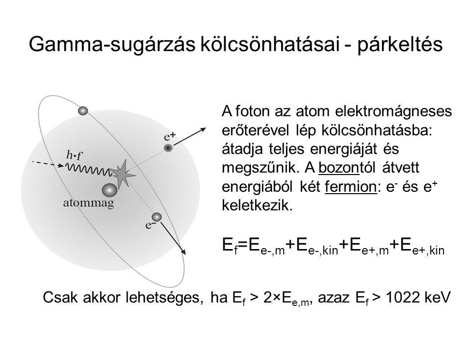 Gamma-sugárzás kölcsönhatásai - párkeltés