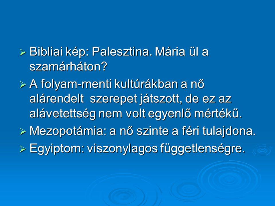Bibliai kép: Palesztina. Mária ül a szamárháton