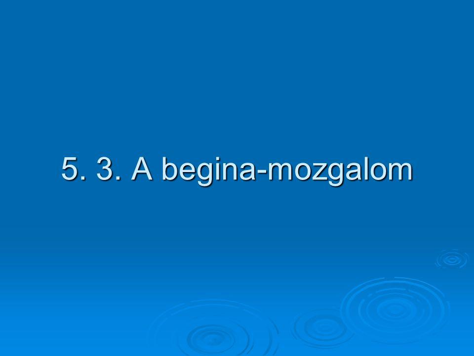 5. 3. A begina-mozgalom