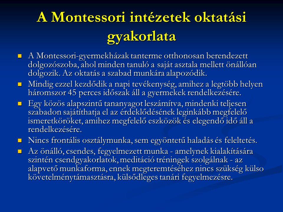 A Montessori intézetek oktatási gyakorlata