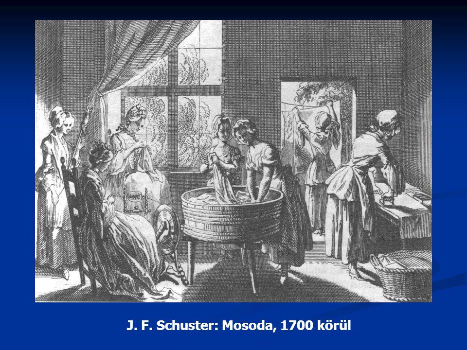 J. F. Schuster: Mosoda, 1700 körül