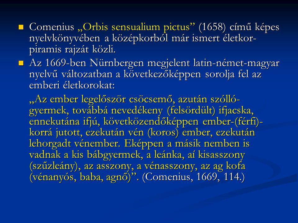 """Comenius """"Orbis sensualium pictus (1658) című képes nyelvkönyvében a középkorból már ismert életkor-piramis rajzát közli."""