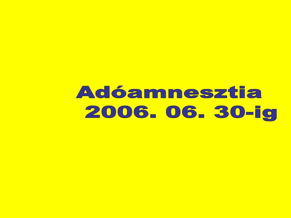 Adóamnesztia 2006. 06. 30-ig