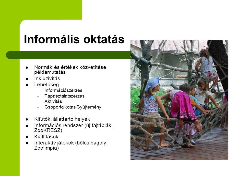 Informális oktatás Normák és értékek közvetítése, példamutatás