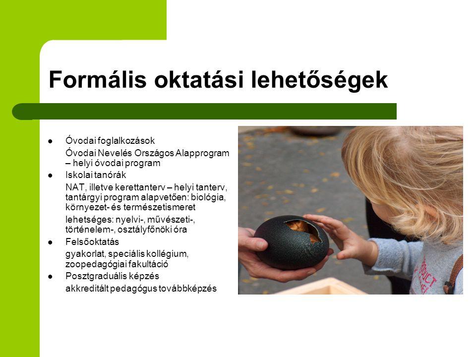 Formális oktatási lehetőségek