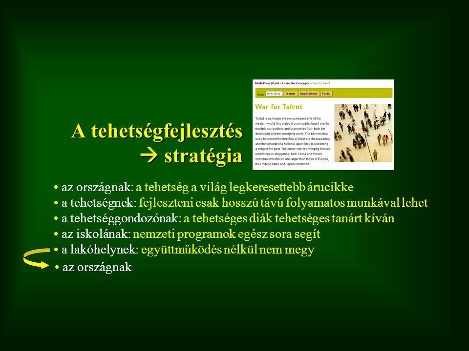 A tehetségfejlesztés  stratégia
