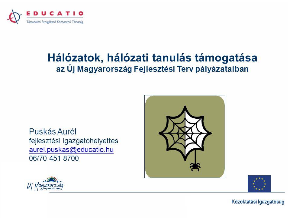 Hálózatok, hálózati tanulás támogatása az Új Magyarország Fejlesztési Terv pályázataiban