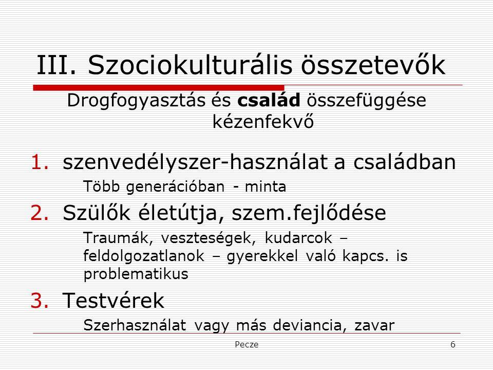 III. Szociokulturális összetevők