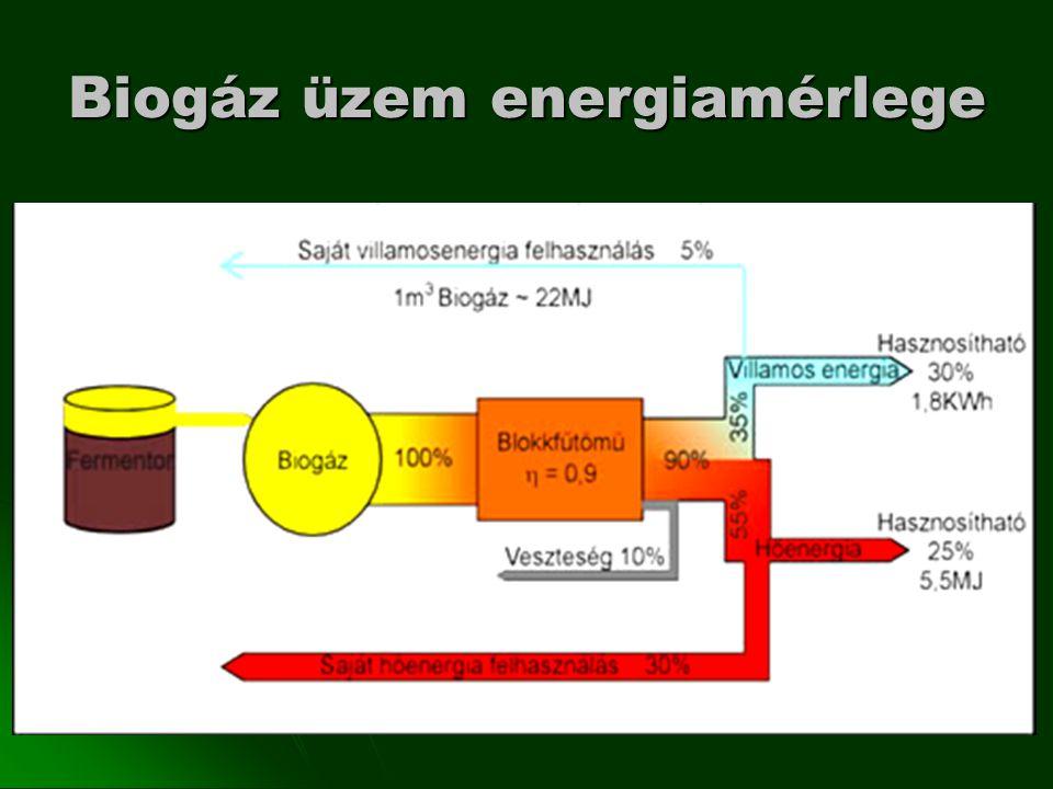Biogáz üzem energiamérlege