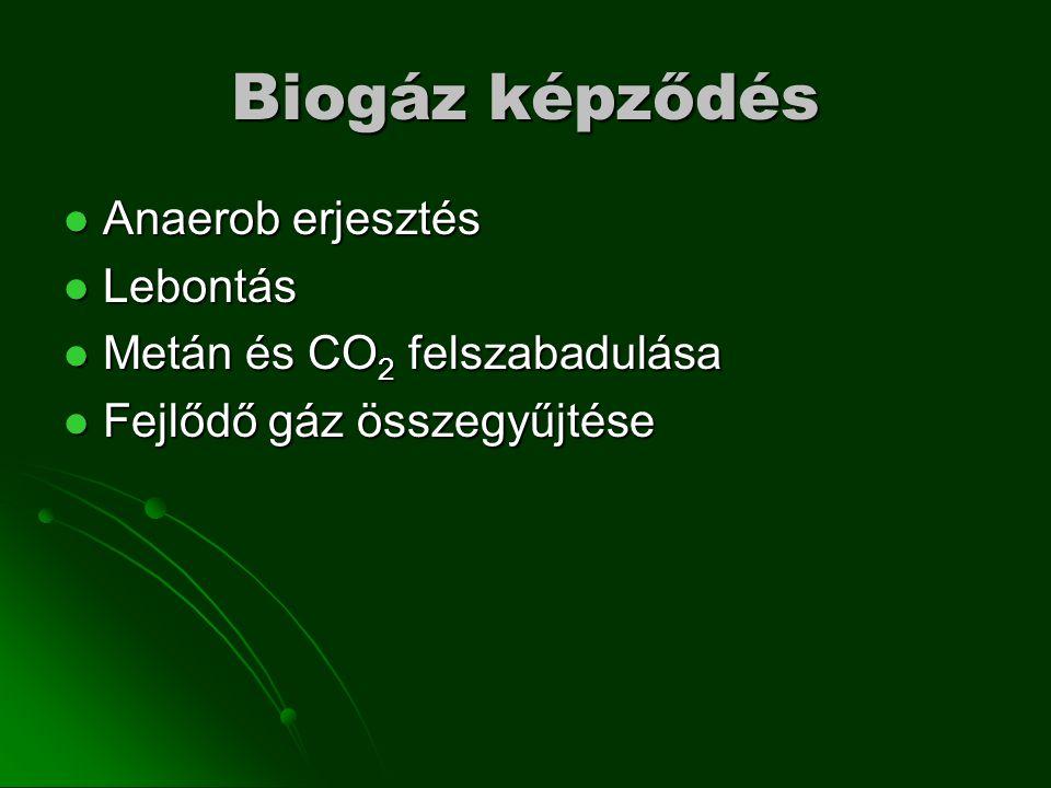 Biogáz képződés Anaerob erjesztés Lebontás Metán és CO2 felszabadulása