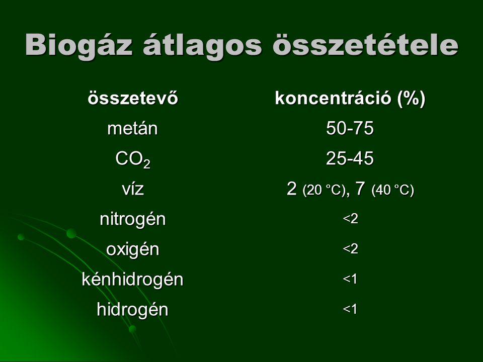 Biogáz átlagos összetétele