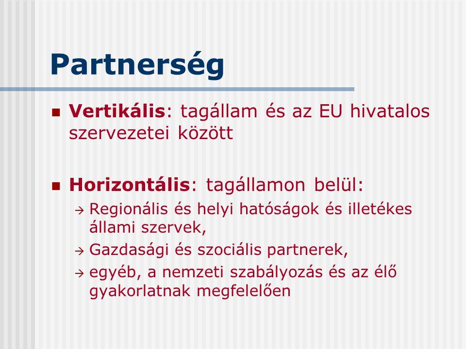 Partnerség Vertikális: tagállam és az EU hivatalos szervezetei között