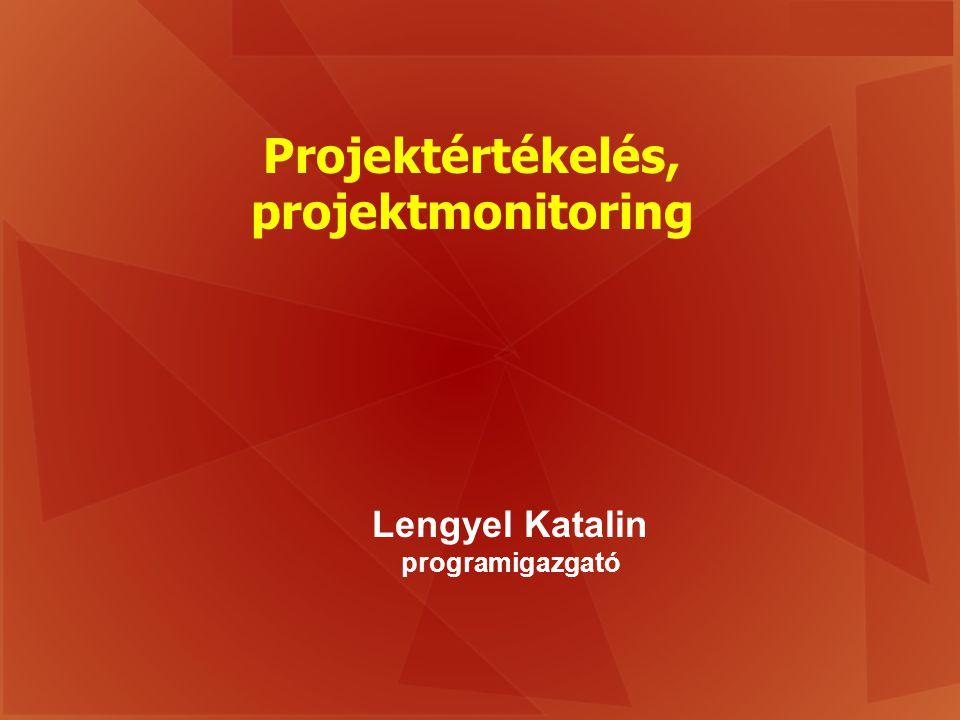 Projektértékelés, projektmonitoring