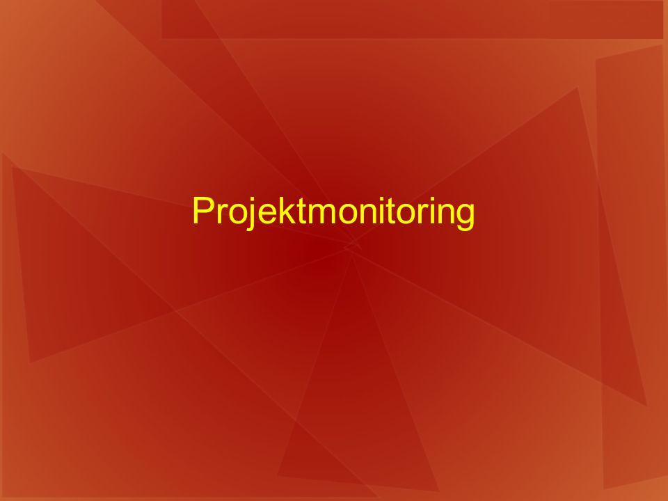 Projektmonitoring