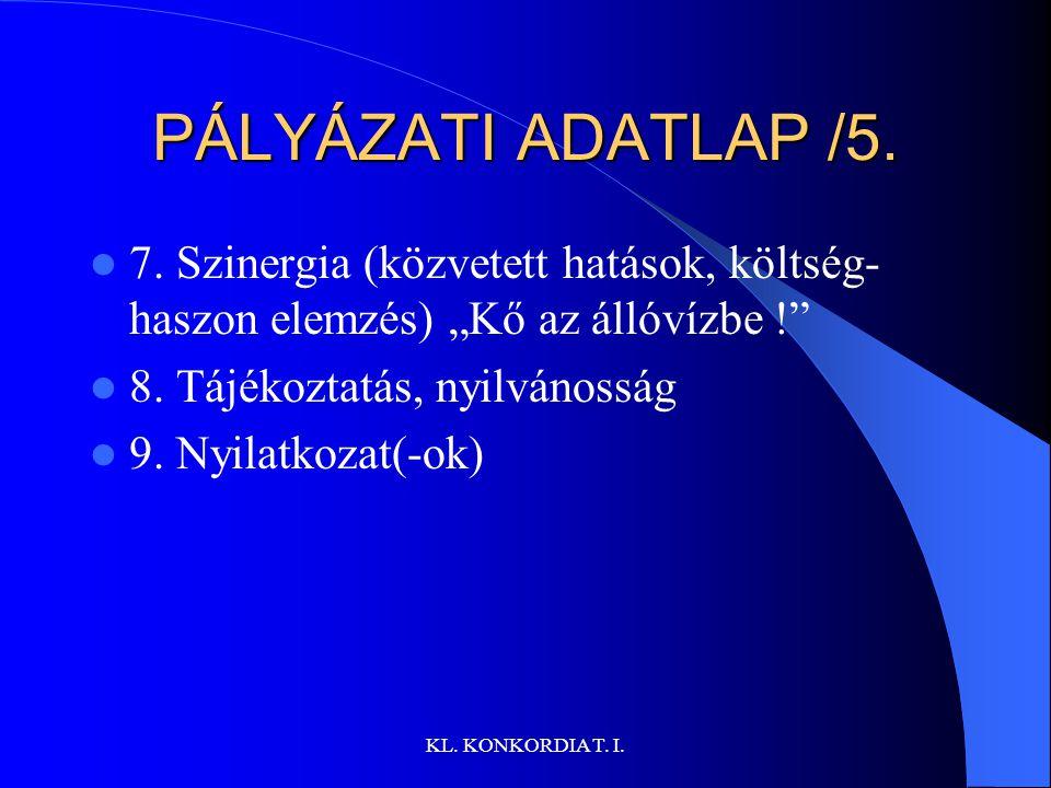 """PÁLYÁZATI ADATLAP /5. 7. Szinergia (közvetett hatások, költség-haszon elemzés) """"Kő az állóvízbe ! 8. Tájékoztatás, nyilvánosság."""