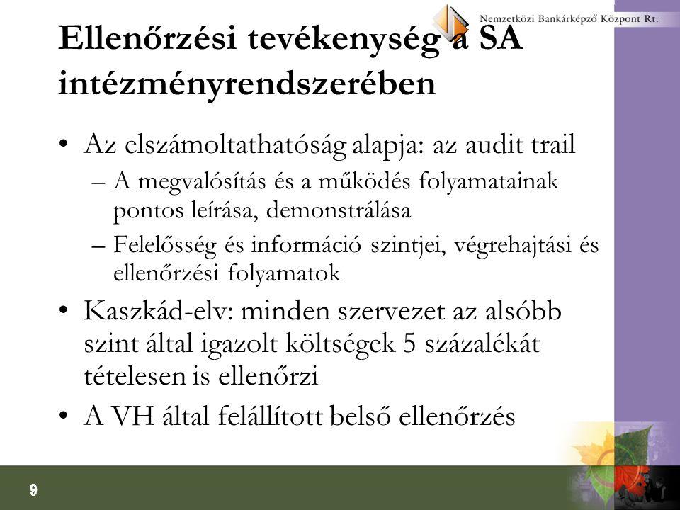 Ellenőrzési tevékenység a SA intézményrendszerében