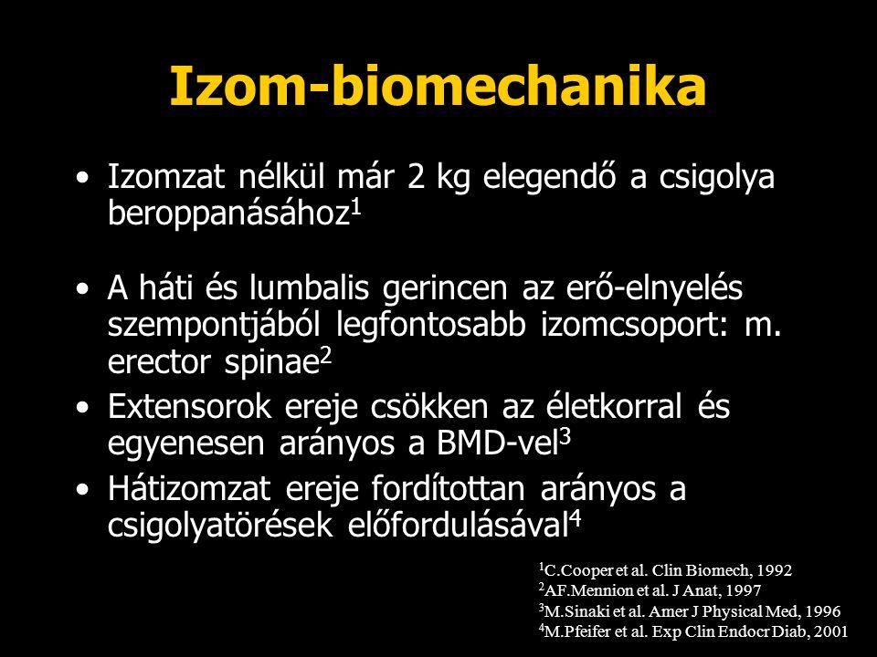 Izom-biomechanika Izomzat nélkül már 2 kg elegendő a csigolya beroppanásához1.